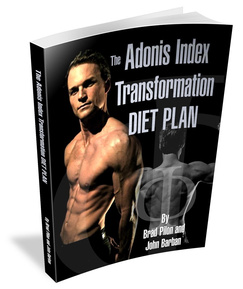 TheAITransformationDietPlan 3D Transformation Diet Plan
